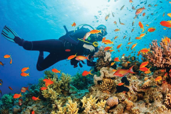 #3 of Top 11 Water Sports in the Andaman Islands: Scuba Diving
