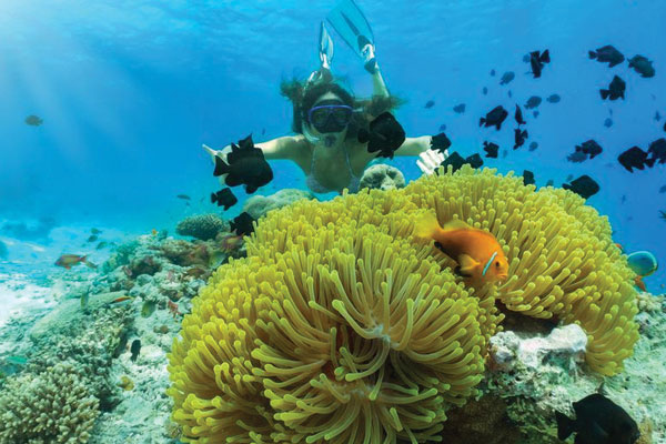 #4 of Top 11 Water Sports in the Andaman Islands: Snorkeling