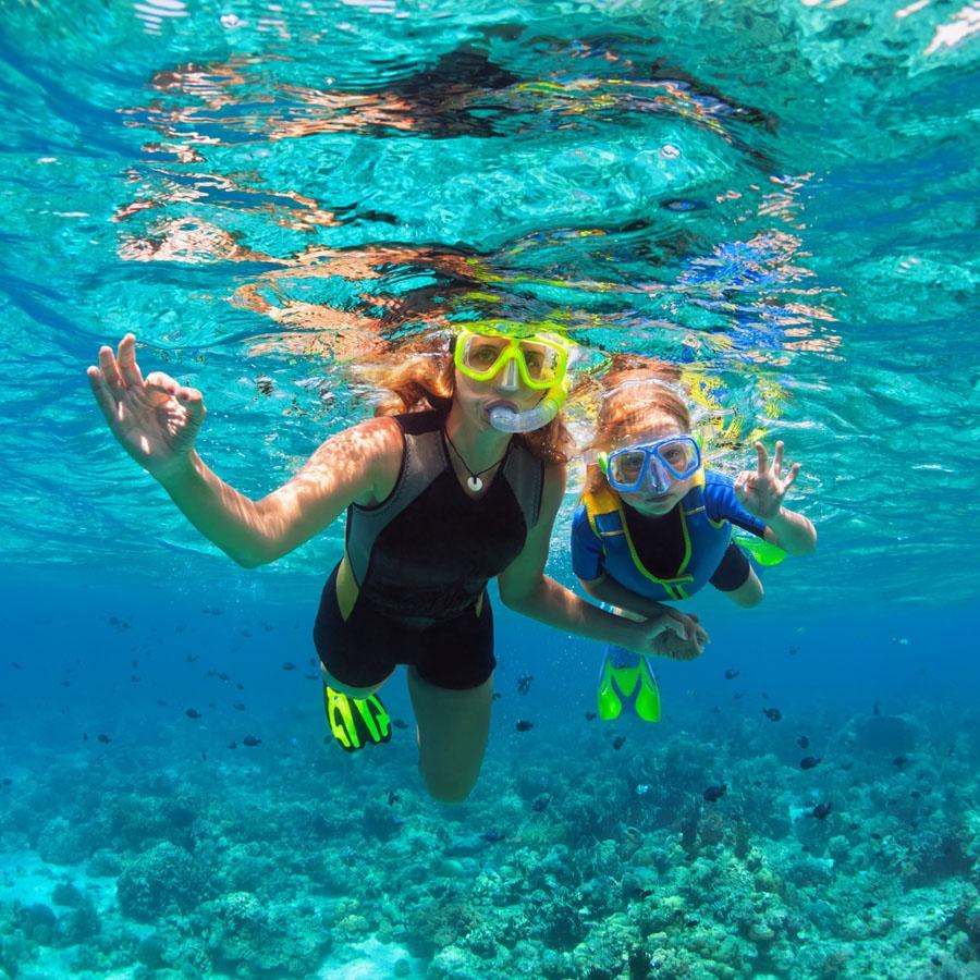 Snorkelling in North Bay Island